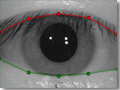 Eyelids separation by VeriEye allows to detect irises even when eyes are partially covered by lids